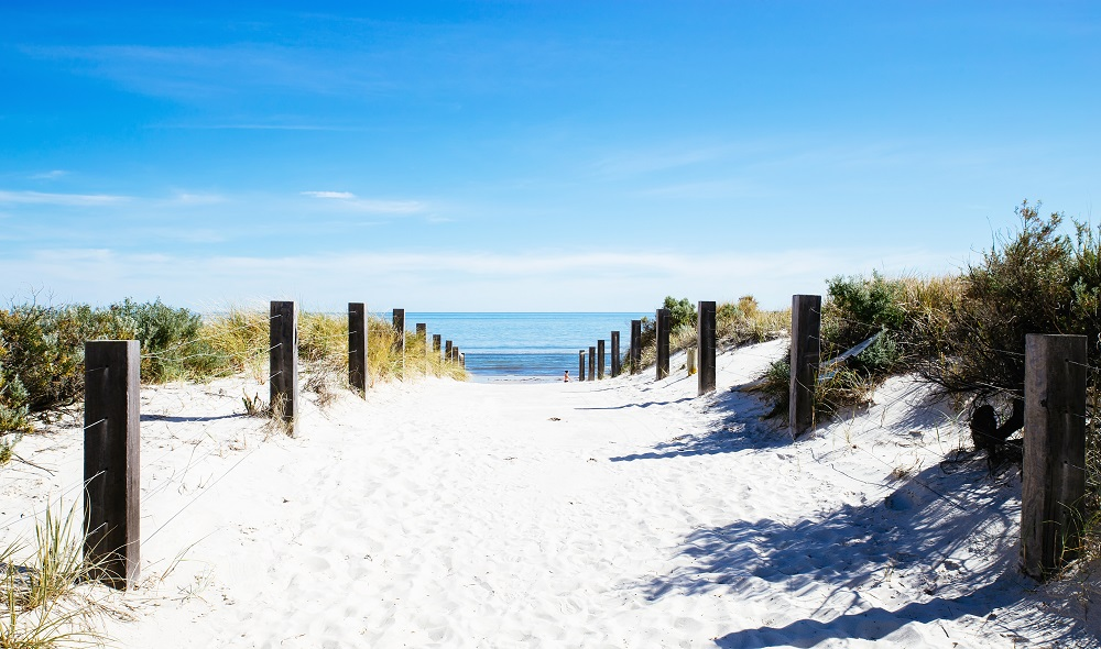 Beach path with wooden fence