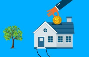 property investor errors